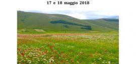 Voci poetiche dalla Galizia. Tra canone e rottura – CILBRA 2018